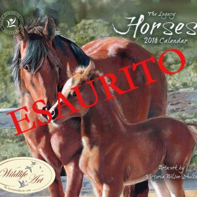 Cavalli 2 copia
